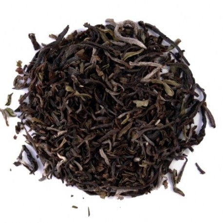 India Darjeelin Kaley Valley S.F.T.G.F.O.P.